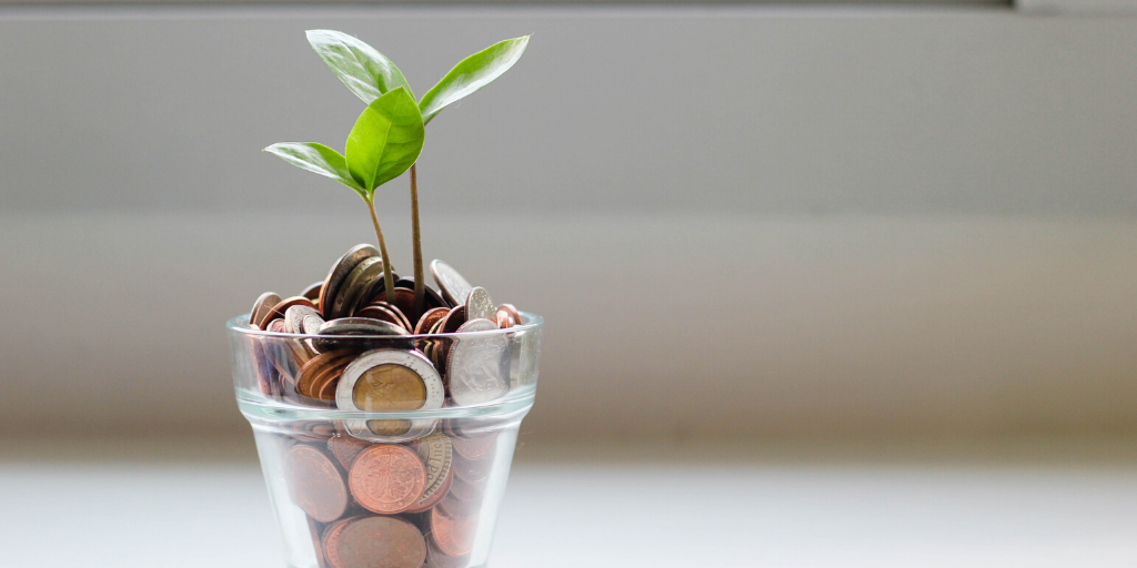 plant growing from money representing green recovery concept